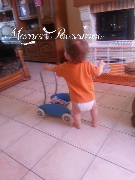 Poussinet et son chariot de marche