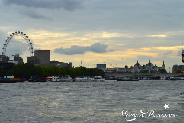 london-eye-tamise