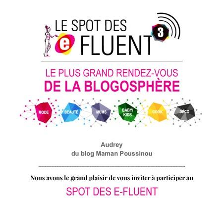 Le blog – Mon pass pour les E-fluent Mums & Dads 3