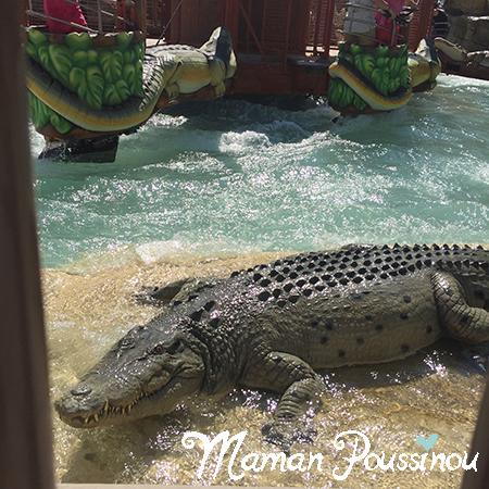 alligator-ok-corral