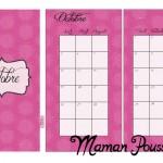 DIY : Les mois d'octobre, novembre et décembre 2015 sur deux pages et leur intercalaire mensuel à imprimer pour ton agenda (filofax) #14
