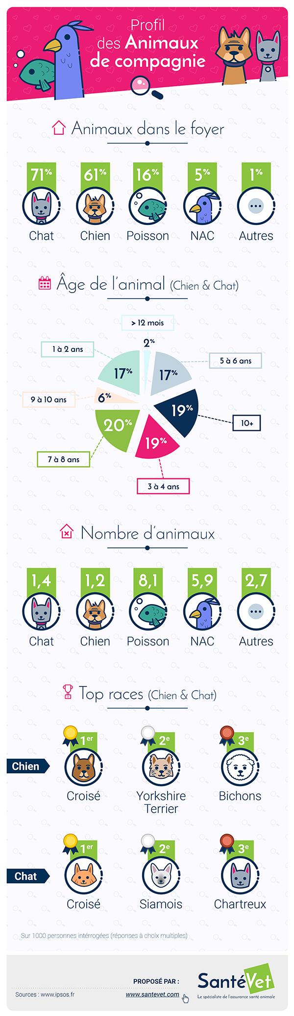 infographie assurance animaux Santé Vet