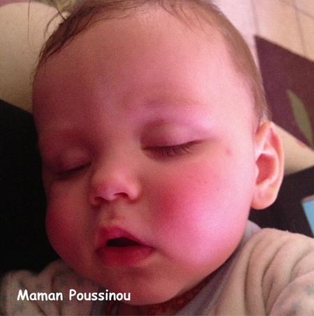 Poussinet joues rouges