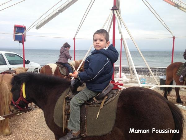 manège poney