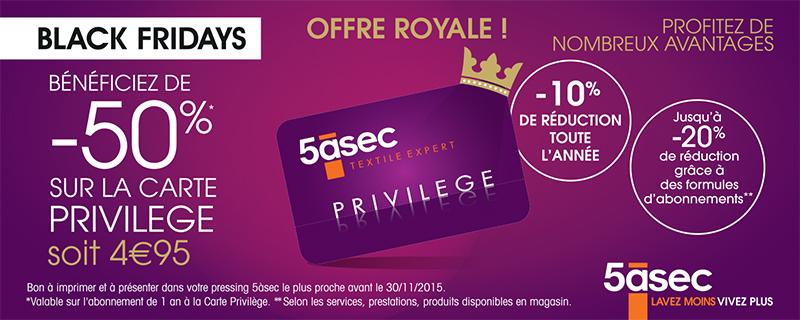 coupon réduc-carte_Blogueuse-12,5x5cmHD
