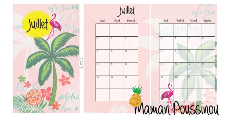 juillet-2016-visuel-kawaii