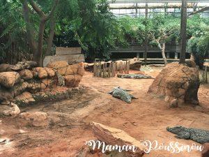 Une journée en famille à la Ferme aux Crocodiles